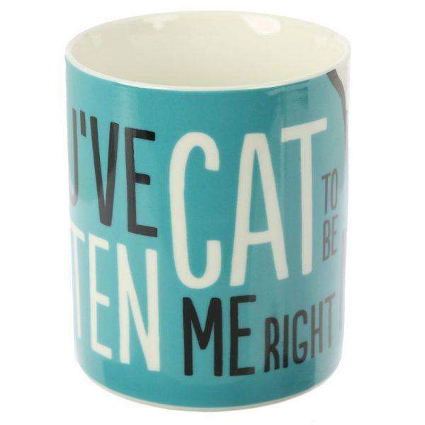 Porcelánový hrnek Simon's Cat, Kitten Slogan 2 - pro milovníky koček